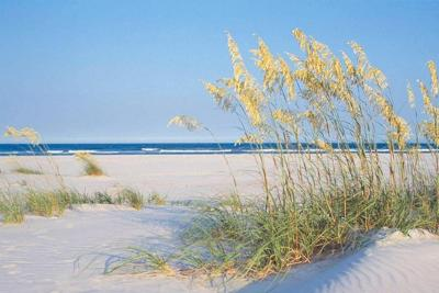 Shell Island Resort Wrightsville Beach Nc Booking Com