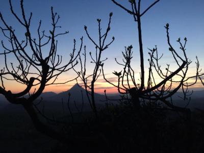 Masseria Floresta - San Cono - Foto 28