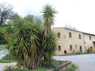 Agriturismo Il Daino - San Piero Patti - Foto 36