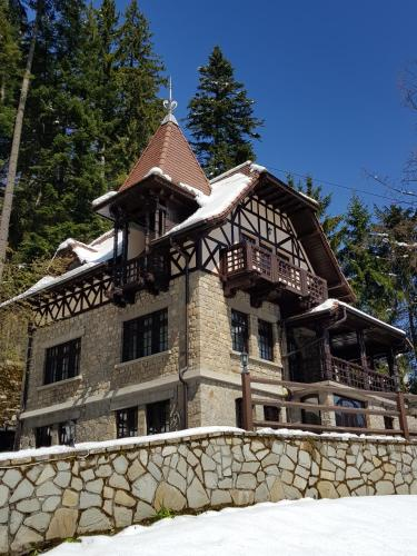 Rustic House Sinaia
