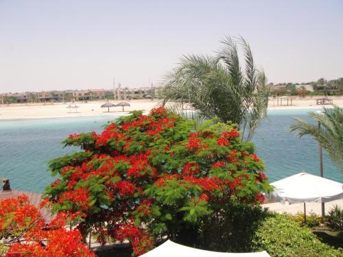 Villa Marina Egypt