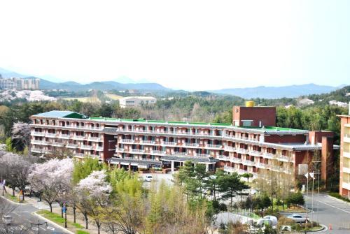 Corea Condo Gyeongju