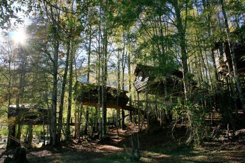 Huilo Huilo Canopy Village