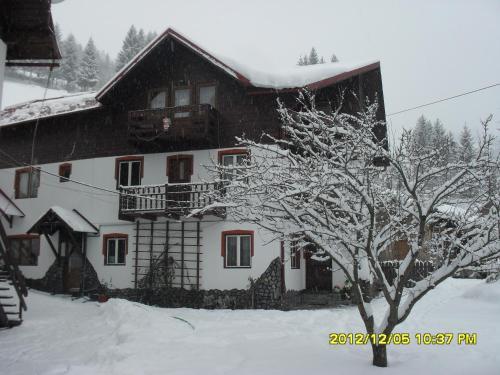 Casa Janina