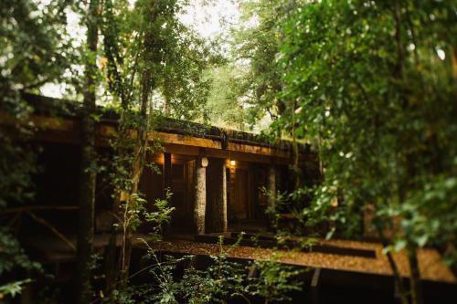 Huilo Huilo Nawelpi Lodge