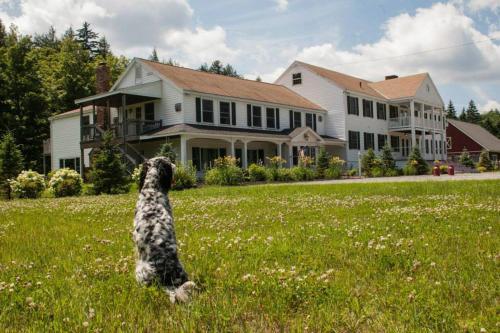 Layla's Riverside Lodge
