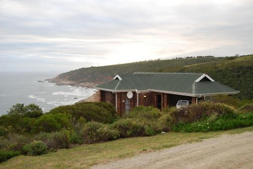 Blue Whale Resort