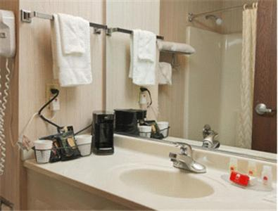 Ramada Bolingbrook Review