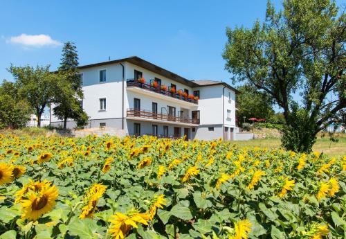 Gasthof-Pension Wein