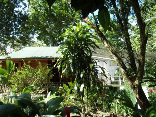 Casa Sofia Caribbean Lodge