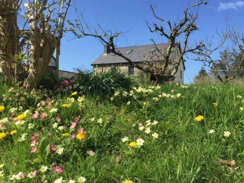 Gorslwyd Farm