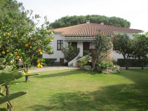 Hotel con piscina a capoterra for Giardini per ville moderne