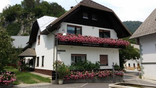 Apartments Gregorc