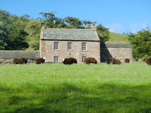 The Dash Farmhouse
