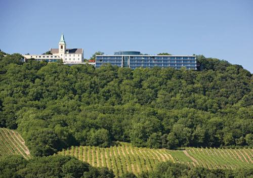 Suitehotel Kahlenberg