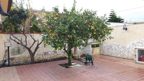 La Casa Del Limone