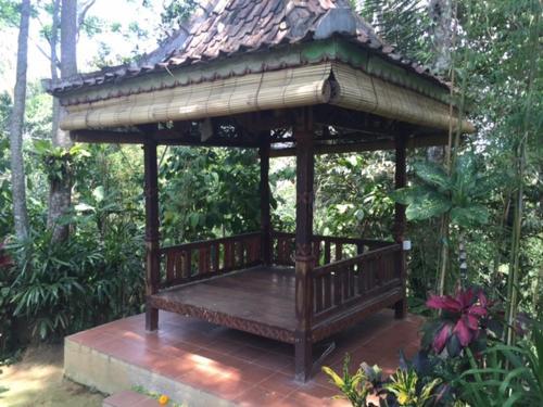 Bird Nest Sanctuary