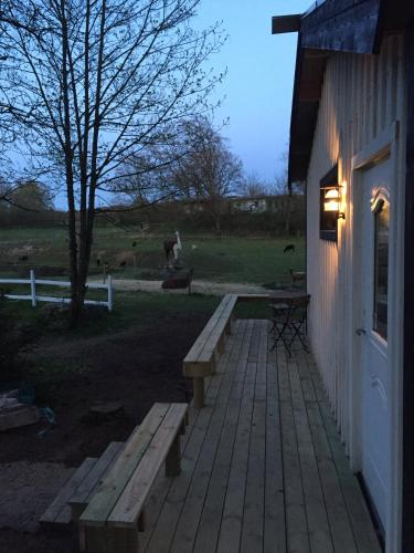 Farm Stay Happy Dogs Ranch
