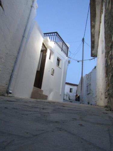 Theanos House