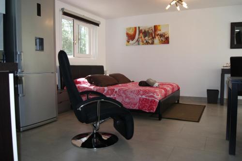 Studio Equipé Tout Confort Villa Castelnau