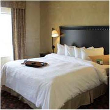 Hampton Inn & Suites Dallas-Arlington North-Entertainment District