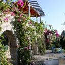 Olive Farm Of Datca Guesthouse, Datça