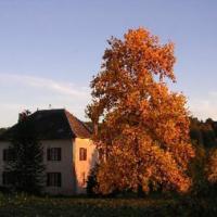 Chambres d'Hôtes - La Lupronne