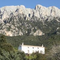 Villa Sospisches Oliena