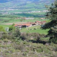 La Grange Mynas