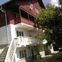 Vila Poienita