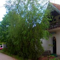 Guesthouse Sokolac N