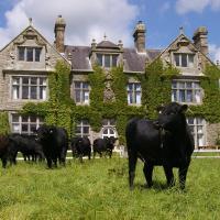 Blessingbourne Cottages & Apartments