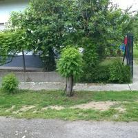 Luca Vendeghaz Home