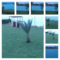 Villa El Nakheel