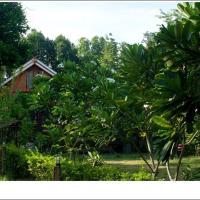 Phuphiangkhiangfah Resort