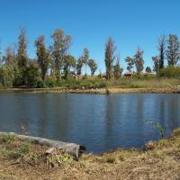 Bernally's Fishing Lodge