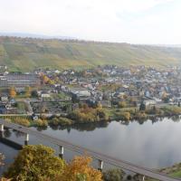 Landgasthof Altes Weingut