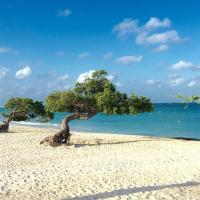 Aruba Paradise Condo