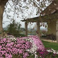 Agriturismo Terre di Musignano