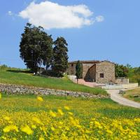 Holiday home Selvapiana Greve in Chianti
