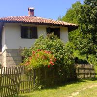 Villa Novakovic