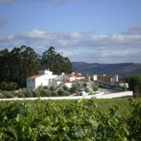 Monte das Oliveiras