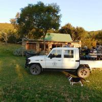 Giraffe View Safari Camp Plettenberg Bay