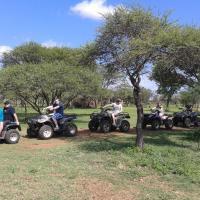 Ngiri Safaris