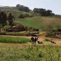 Poshada Rural