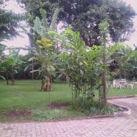 Sariko Olasiti Garden