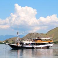 Fadaelo Live Onboard