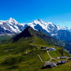 Grindelwald 334 hotéis