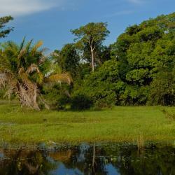 Rondonópolis 21 hotéis