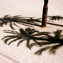 Costa del Silencio 371 hoteles